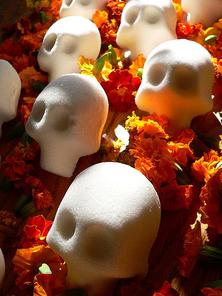 Finished skulls