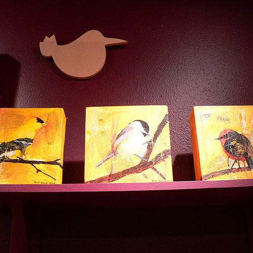 Chickadee-more
