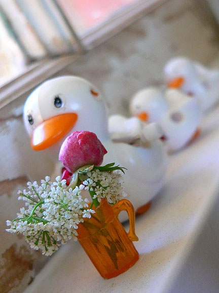 Tiny-flowers-and-ducks