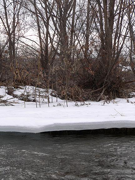 Iceshelf