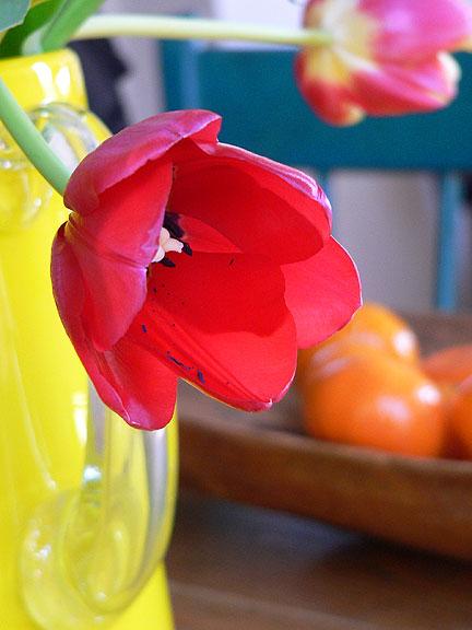 Tulip-detail