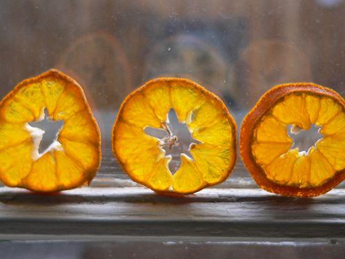 Citrus4