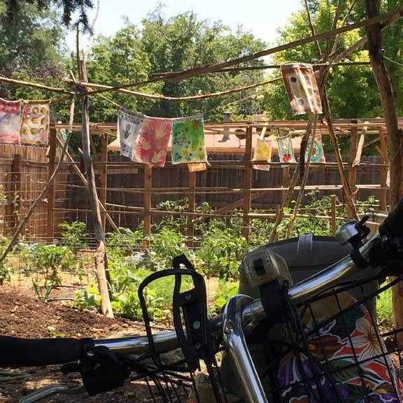Garden54web