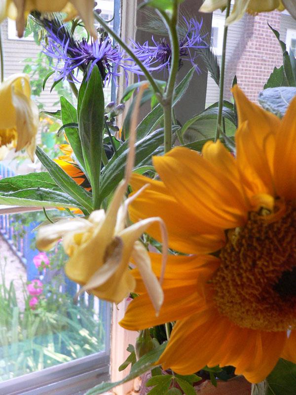 Flowers2011