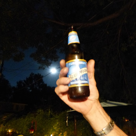 Bluemoon13