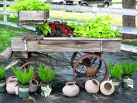 Cart_at_the_farm