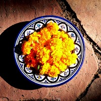 Bowl_of_marigolds