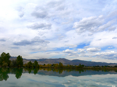 Coot_lake