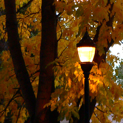 Orange_glow_of_street_lamp