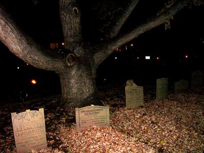 Entry_tree