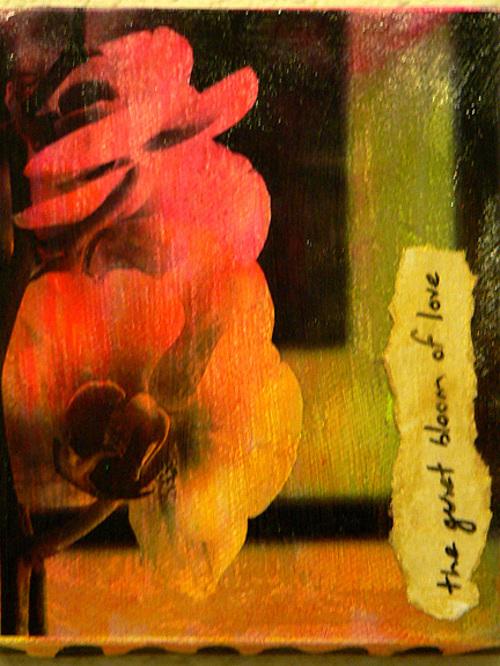 Quiet_bloom_of_love